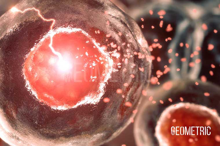 oncology cell signalling animation
