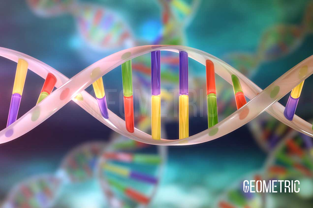 DNA 3D Illustration by Geometric Medical