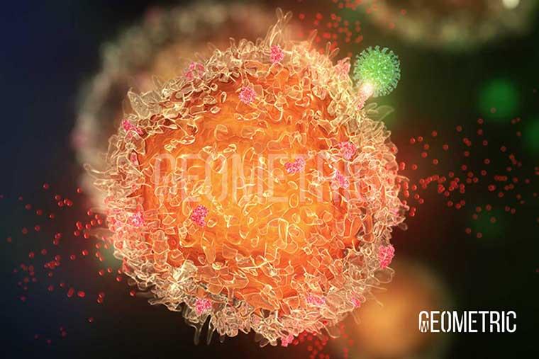 Influenza Virus animation