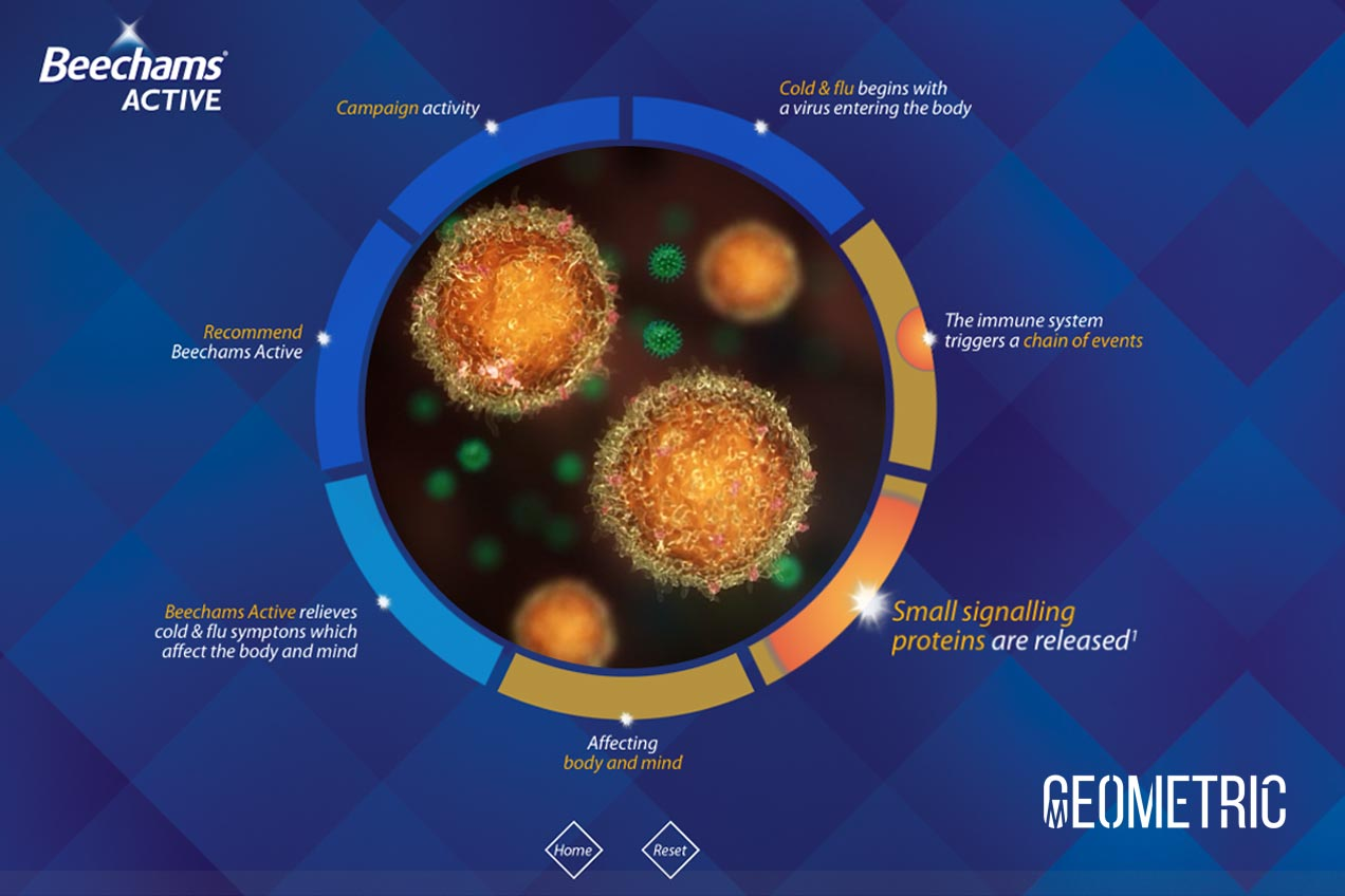 View Influenza Animation