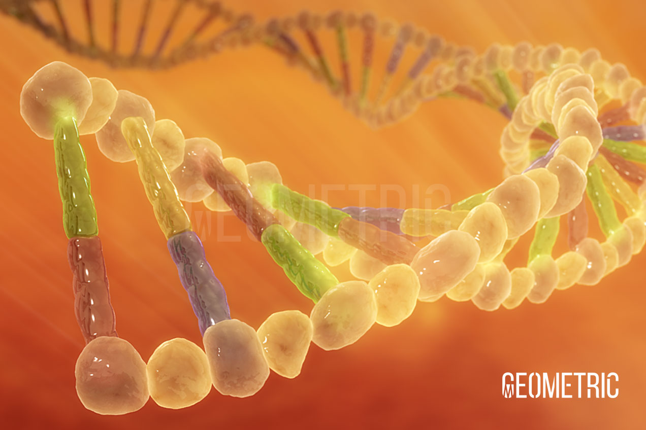 A stylized DNA 3D Illustration by Geometric Medical