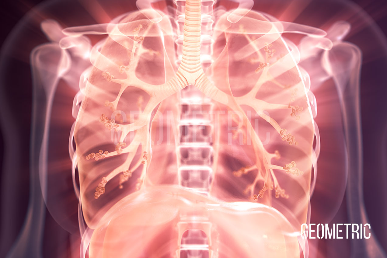 Respiratory System, Illustrated by Geometric Medical Animation